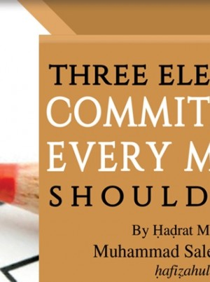 Three Electoral Commitments Every Muslim Should Make